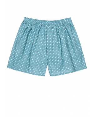 Men's Printed Cotton Boxer Shorts in Spot Light Teal